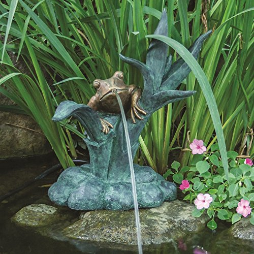 Frog Spitter (Aquascape Frog on Reed Fountain Spitter with Pump for Pond, Garden and Water Features | 78211)