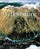 Yellowstone, Laurel Aziz, 1552092380