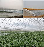 Cheap OriginA Clear Plastic Film Polyethylene Covering for Greenhouse and Grow Tunnel,3.1mil 12ftx25ft