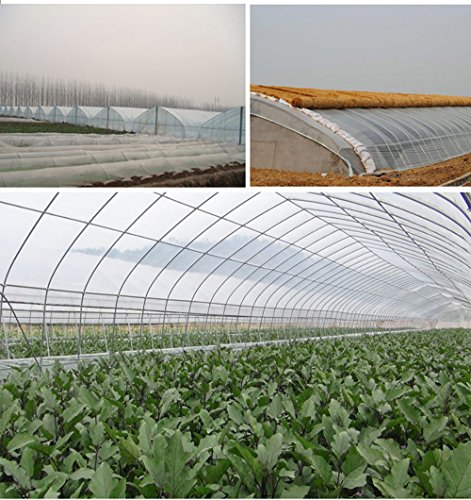 Clean Plastic Film Polyethylene Covering for Greenhouse and Grow Tunnel,2.4mil 6ftx8ft