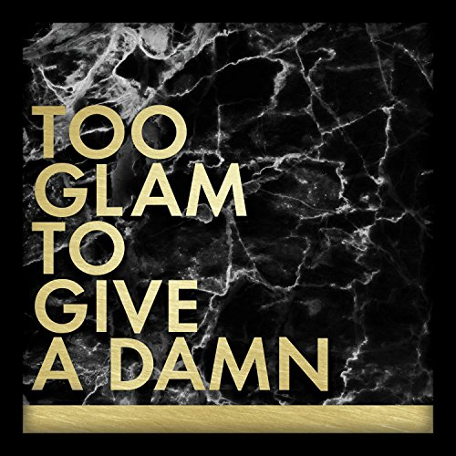 Linden Ave AVE10353 Too Glam to Give A Damn Shadowbox Wall Art (Glam Wall Decor)