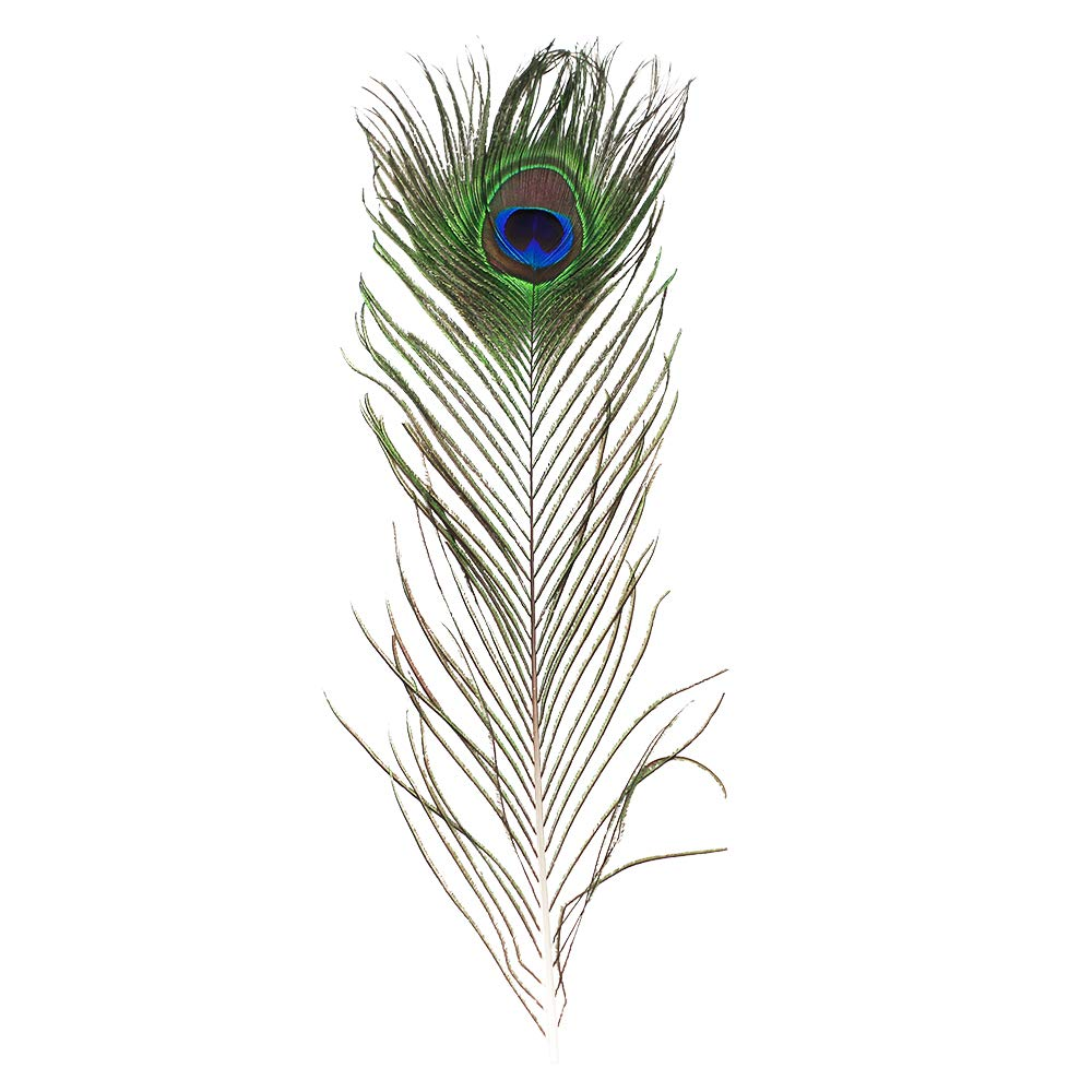 Real Natural Peacock Feathers 16-18 inches 10 40~45cm Great Wedding Christmas Halloween Decorations House Decoration