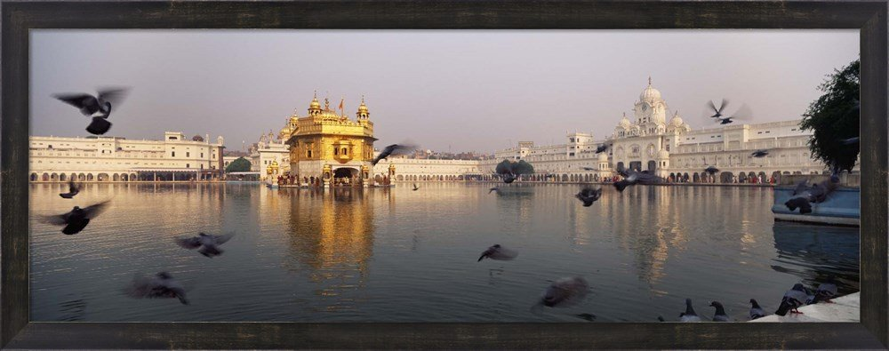 Reflection of a temple in a lake, Golden Temple, Amritsar, Punjab, India by Panoramic Images Framed Art Print Wall Picture, Espresso Brown Frame, 38 x 14 inches