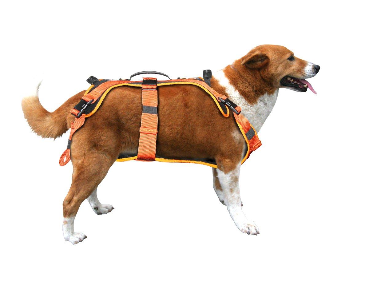 Fusion Pets Virtua Heavy Duty Full Body Dog Harness, 31 to 120-Pound, Medium