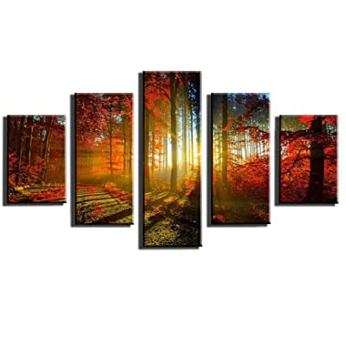 PEACOCK JEWELS [Small] Premium Quality Canvas Printed Wall Art Poster 5 Pieces / 5 Pannel Wall Decor Forest Sunset Sunlight Autumn Red Painting, Home Decor Pictures - Stretched