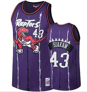 huge selection of e87a9 48355 Men's Toronto Raptors Pascal Siakam Purple Hardwood Classic Swingman Jersey
