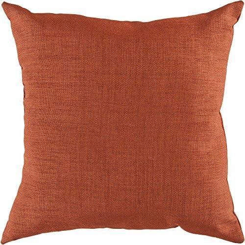 Surya ZZ431-2222 Indoor Outdoor Pillow, 22-Inch by 22-Inch, Rust Cherry