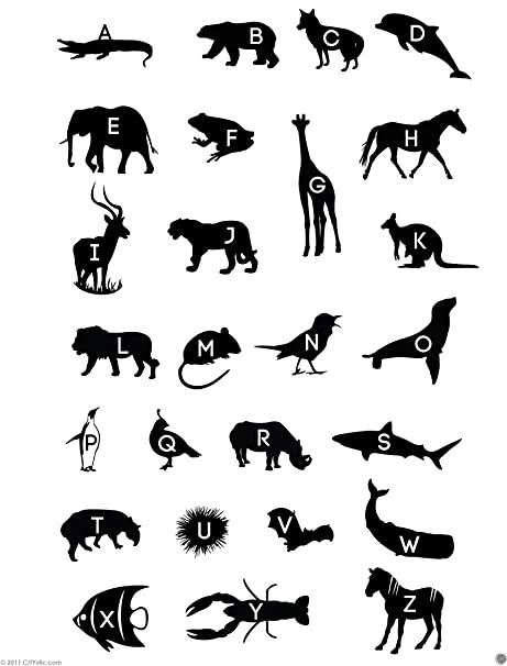 Image of: Smiling Citystic Animals Alphabet Decal Great Alphabet With Animal Names First Letters Rhino Giraffe Scalsys Citystic Animals Alphabet Decal Great Alphabet With Animal Names