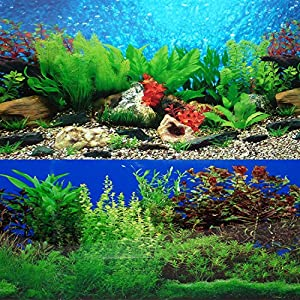 "New 9088 20"" x 48"" Fish Tank Background 2 Sided River Bed & Lake Background Aquarium 4"