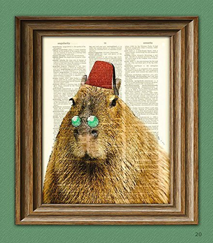 capybara-claudio-the-capybara-the-worlds-largest-and-most-fabulous-rodent-with-fez-illustration-dict
