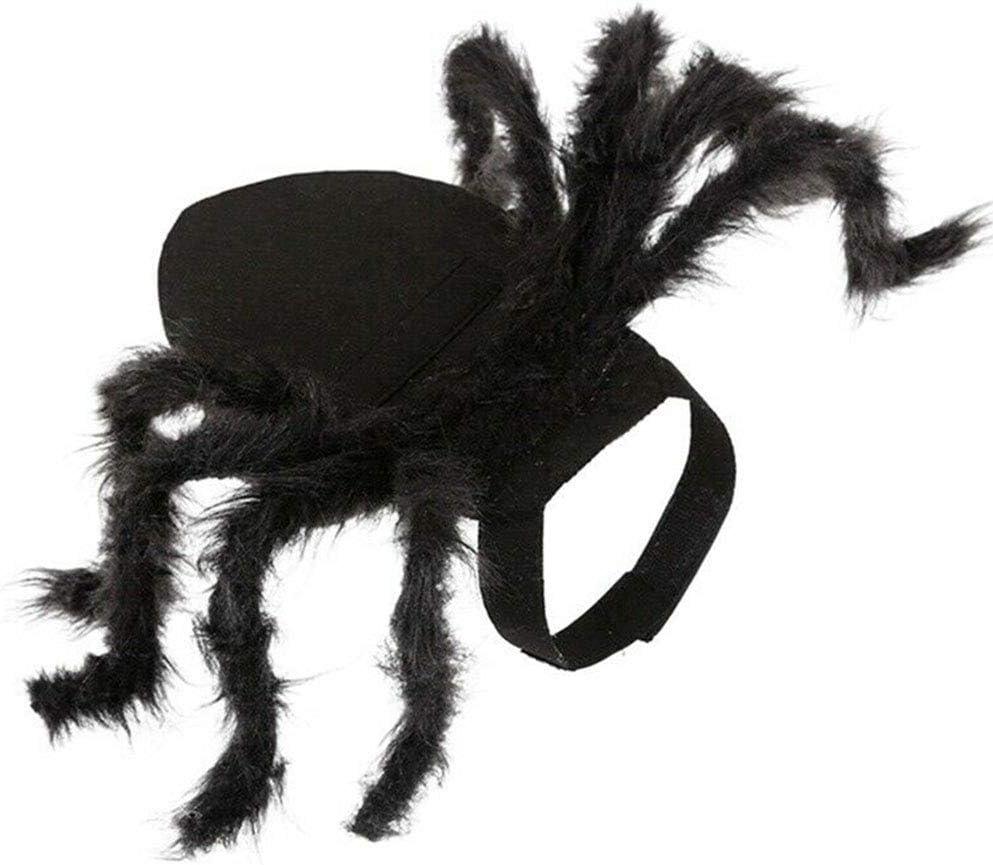 Qagazine Disfraz de araña de Halloween Mascotas, Ropa de Cosplay para Perro, Disfraces Divertidos de Halloween para Mascotas, Small