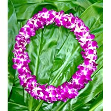 Fresh Hand Made Dendrobium Orchid Lei Sonia- eflowerwholesale