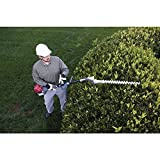 Honda SSHHS-S Double Sided Hedge Trimmer VersAttch
