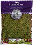 SuperMoss (21580) Sheet Moss Dried, Natural, 2oz