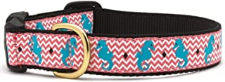 product image for Up Country Tropical Aqua & Pink Seahorse Pet Premium Dog Collar