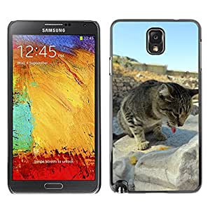 Etui Housse Coque de Protection Cover Rigide pour // M00133871 Gato Turquía // Samsung Galaxy Note 3 III N9000 N9002 N9005