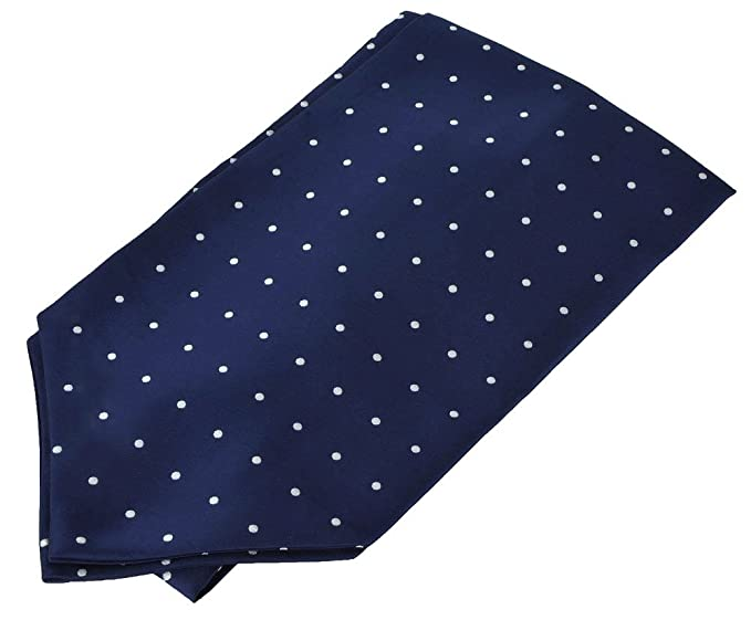 996d8044c707 Image Unavailable. Image not available for. Color: Men's Microfiber Ascot  Tie - Navy Blue White Polka Dot ...