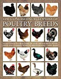 img - for The Concise Encyclopedia of Poultry Breeds by Fred Hams (2015-10-01) book / textbook / text book