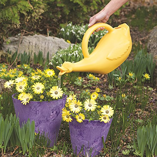 Lucky Duck Watering Can, Yellow, 1-Gallon