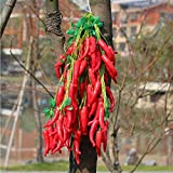 Conjugal Bliss 1PC Artificial Vegetables Red Chili Lifelike Fake Foam Vegetable Strings Hanging for Home House Garden Christmas Halloween Decor DIY Decoration (RED)