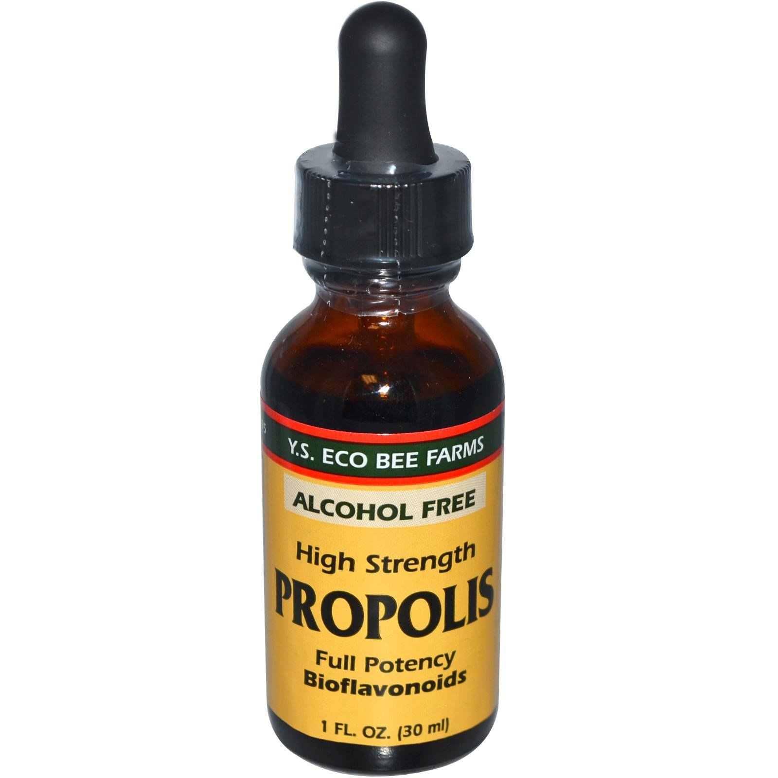Y.S. Eco Bee Farms High Strength Propolis Alcohol-Free 1 oz (Pack of 3)