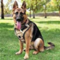 Babyltrl Camo Large Dog Harness No Pull Adjustable Pet Reflective Oxford Soft Vest for Large Dogs Easy Control Harness (Dog Collar Included)