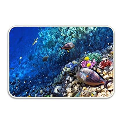 Amazon Com Ocean Seabed Reef Fish Novelty Weclome Carpet Non