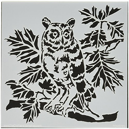 CRAFTERS WORKSHOP TCW609S Template, 6'' x 6'', Curious Owl, White by CRAFTERS WORKSHOP