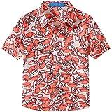 SSLR Big Boy's Flamingos Button Down Casual Short Sleeve Hawaiian Shirt (X-Small(6), White)