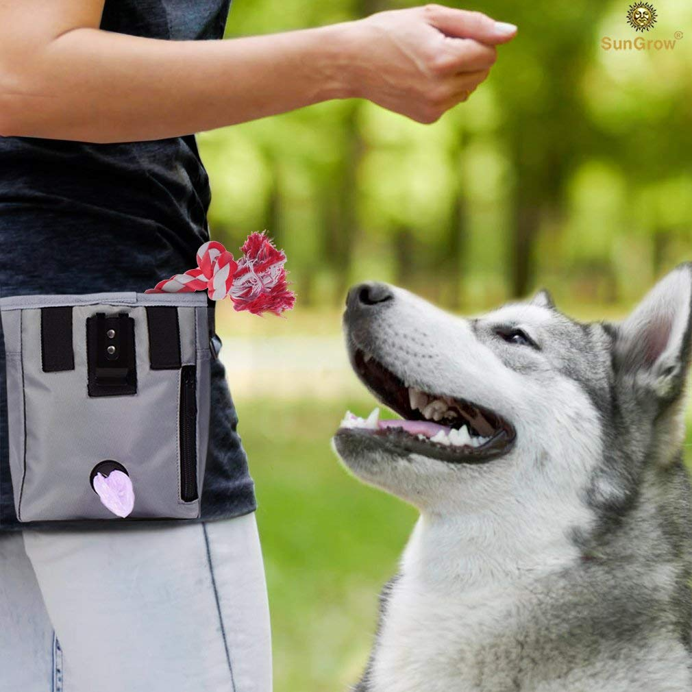 Dog Treat Pouch --- Pet Snacks, Toys and Training Tools Carrier - With Built-In Poop Bag Dispenser - Stylish, Multi-wear, Multipurpose - Weather-Resistant Nylon Fabric Material