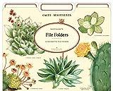 Cavallini Papers & Co., Inc. FF/SUC File Folders Succulents 12 File Foldersper Set