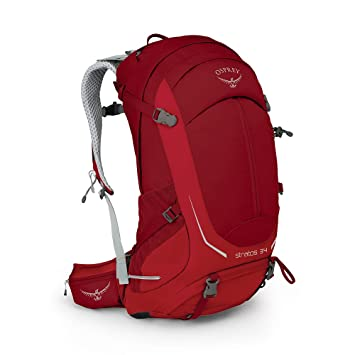 475666b14a Osprey Packs Stratos 34 Backpack  Amazon.co.uk  Sports   Outdoors