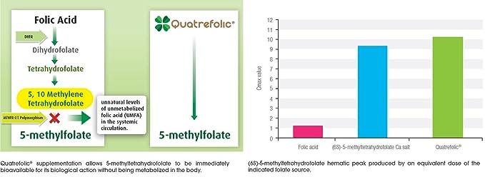 EnergyBalance Folic Acid 90 Capsules à 600µg 5-MTHF Folic Acid | Para Aumentar la Absorción de Folato | Vitamina B9 | Vegano, Libre de Lactosa y Sin ...