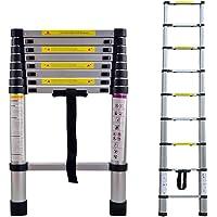 LARS360 Échelle télescopique Échelle multifonction Échelle coulissante Échelle polyvalente Échelle en aluminium de haute qualité (2.6m)
