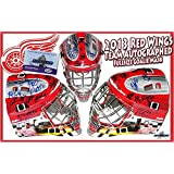 2013-2014 DETROIT RED WINGS Team Signed FULL SIZE GOALIE MASK - w/COA - Autographed NHL Helmets and Masks
