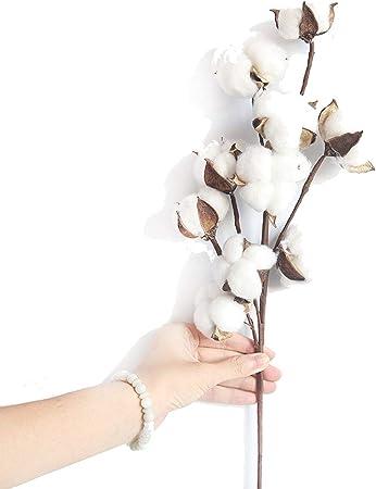 Soul Ray - Ramas de Flores Artificiales de algodón secadas de 10 Cabezas para decoración de Bodas, Fiestas, Flores Artificiales, decoración del hogar, Color Blanco: Amazon.es: Hogar
