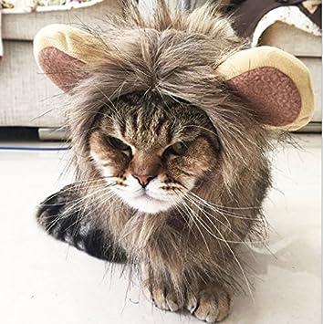 fangxin mascotas Disfraz León crin peluca Cosplay con orejas para pequeños perros/gatos Halloween Carnaval