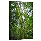 Art Wall 'Green Trees' Gallery Wrapped Canvas Art by Dan Wilson, 36 by 24-Inch