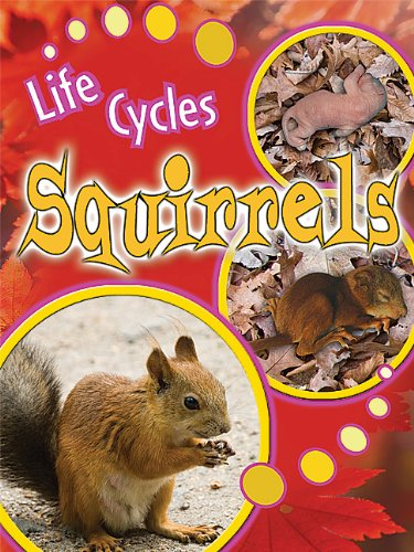 Squirrels (Life Cycles (Rourke Paperback))