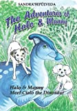 The Adventures of Halo and Manny, Sandra Sepulveda, 0982733755