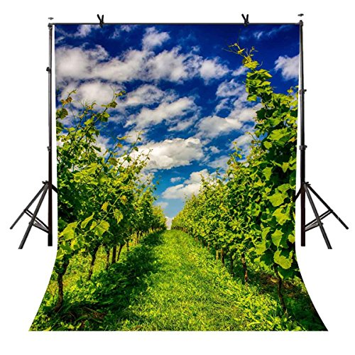 LYLYCTY 5X7ft Orchard Backdrop Blue Sky and White Clouds Orchard Photography Backdrops Photo Studio Background Props Room Mural -