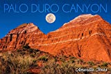 Amarillo, Texas - Palo Duro Canyon - Moon and Red Rock (12x18 Collectible Art Print, Wall Decor Travel Poster)