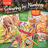 Colored Pencil By Numbers Gift Set Colored Pencil