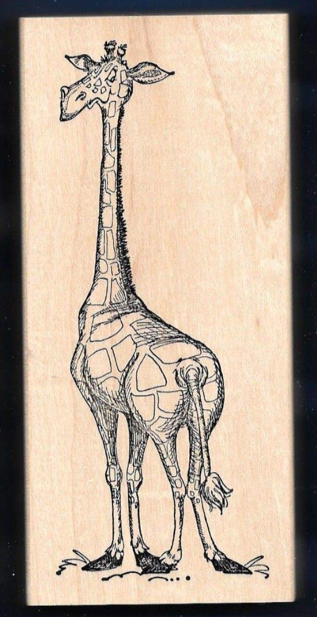 Rubber Stamp Frames Giraffe 4.75034; Tall Adorable Animal New X-Large Art Impressions Rubber Stamp