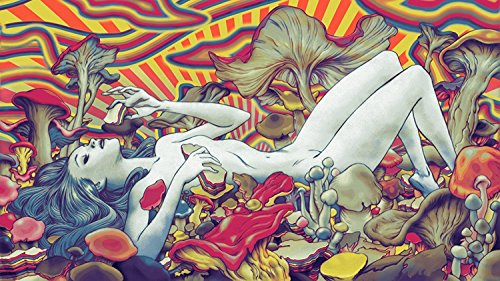 "NewBrightBase Psychedelic Trippy Art Fabric Cloth Rolled Wall Poster Print - Size: (43"" x 24"" / 24"" x 13"") from NewBrightBase"