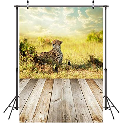 Fondo para Fotografia Guepardo de la Selva Fondo Photocall ...