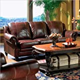 Princeton - Tri-Tone Burgundy Leather Sofa by Coaster