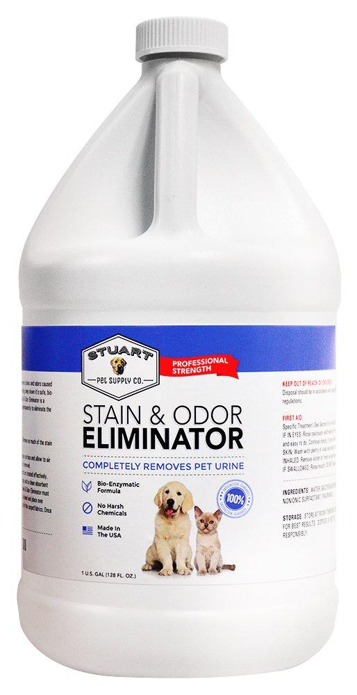 Los mejores 6 removedores de malos olores para quienes tienen perros la opini n - Quitar olor a pis de gato ...