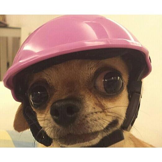 8429e828922 Amazon.com   Adarl Cute Helmets Helm Hats Toys For Puppy Pet Dog Cat   Pet  Supplies