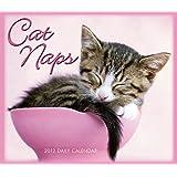 Cat Naps 2012 Box/Daily (calendar)